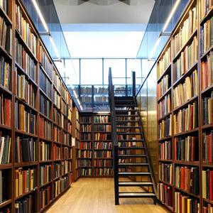 Библиотеки Сюмси